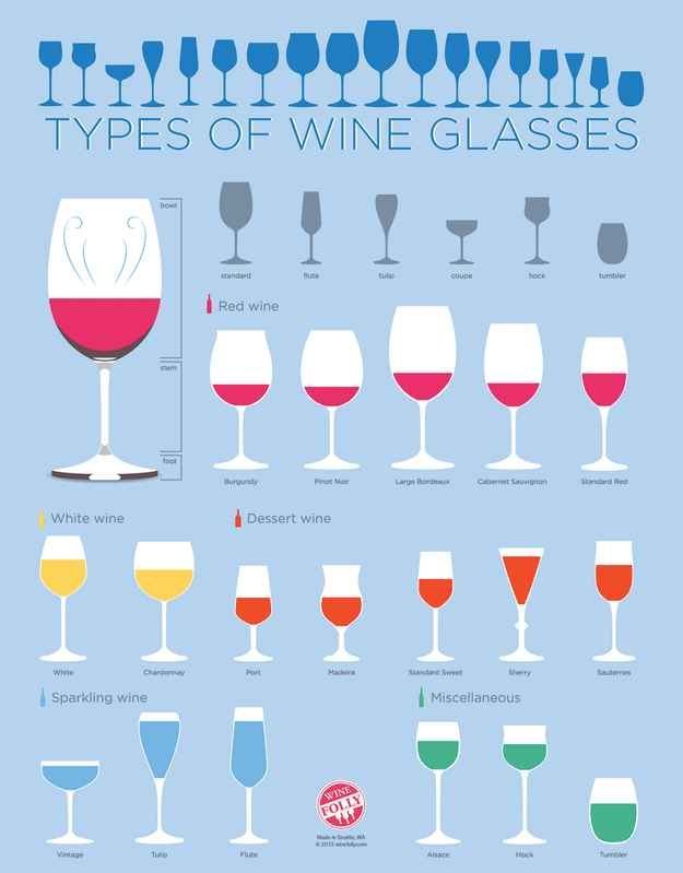 Every type of wine glass. Info graphics to help with alcohol.