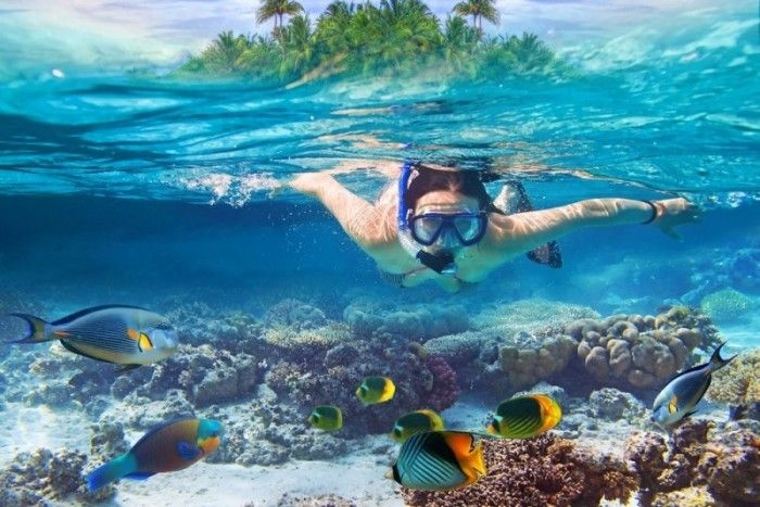 Enjoy the best Snorkeling Excursions In Punta Cana with Seaprodivers.com. SeaPro excursions in Punta Cana range from speed boat tours right off the beach to tropical snorkeling excursions to Catalina Island and Saona visit website http://www.seaprodivers.com/excursions-punta-cana/ .