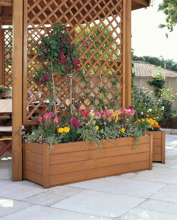 very narrow trough planter with trellis for our front walk