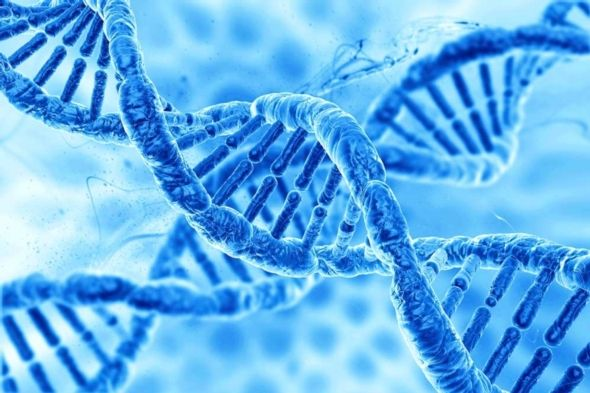The Americans with Disabilities Act: A Shield Against Genetic Discrimination