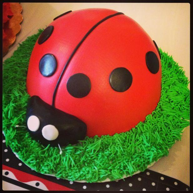 Cake Designs Ladybug : 51 best images about My Cakes on Pinterest Mardi gras ...