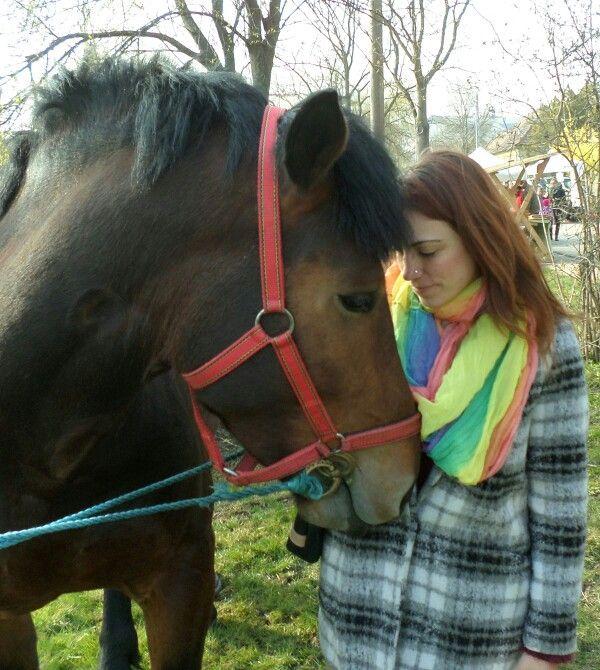 """""""A ló: nemesség önteltség nélkül, barátság irigység nélkül, szépség hiúság nélkül. Készséges segéd, de soha nem rabszolga."""""""
