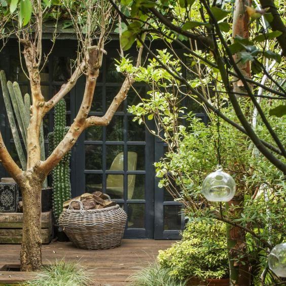 Abigail Ahern's London garden
