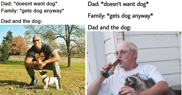 Dad And The Dog Memes For Dads Who Didn T Want Dogs Funny Dog Memes Dog Memes Best Friend Meme