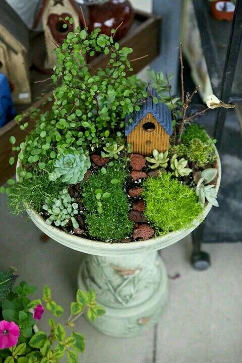 Fairy Garden Ideas: Excellent Hobby For Gardeners Who Canu0027t Garden   Or  People With U0027The Child In Their Eyesu0027 : )