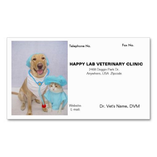 193 best veterinarian business cards images on pinterest business veterinarians business card colourmoves