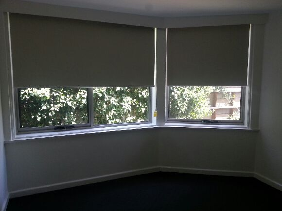 Pull down blinds like this for the big window in the breezeway but brown