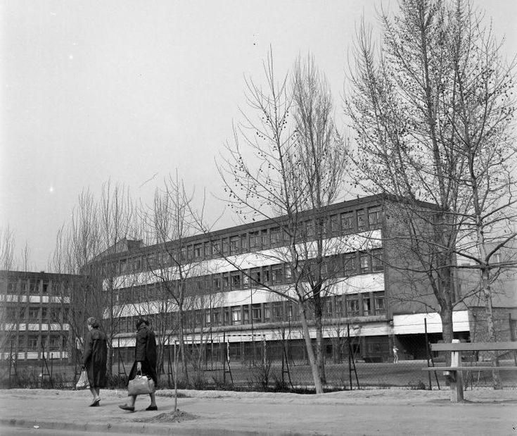 a Jókai Mór Általános Iskola hátsó szárnya és udvara a Móricz Zsigmond tér felől nézve.