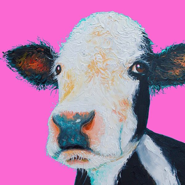 Hereford Cow on Hot Pink   #cowpainting #kitchenart #kitchenwalldecor