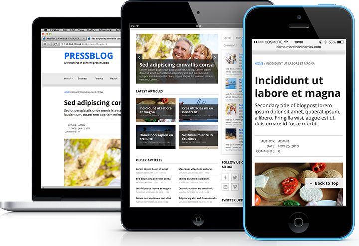 Α stylish, responsive Drupal theme for news and academic sites. With multiple color & font styles.