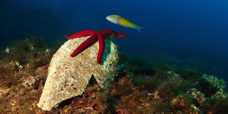 Mare Punta Secca (RG), Sicilia - Discover specials: www.bookinsicly.com