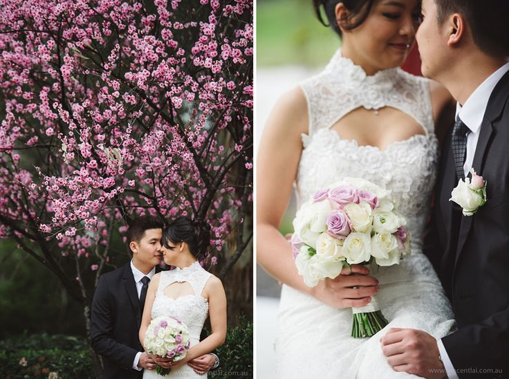 nurragingy – Search Results – Sydney Wedding Photographer :: Vincent Lai