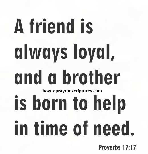 Bible Verse For A Freind: The 25+ Best Bible Verses About Friendship Ideas On