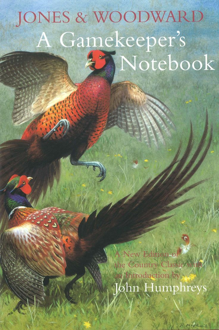 A Gamekeeper's Notebook by Owen Jones & Marcus Woodward | Quiller Publishing. This classic country book was first published in 1910 during the heyday of the ground sporting estates of England. This edition provides an absorbing account of the keeper's daily life and work month-by-month through the seasons; revealing the secrets of the trade, the ways of the pheasant and the stoat, etc. as well as methods of the night poacher. One of the most authoritative books of its kind. #game