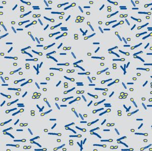 The Pattern Observer #5 on The Creative Contente blog | bacteria blue yellow on grey  by: wolfishie on spoonflower