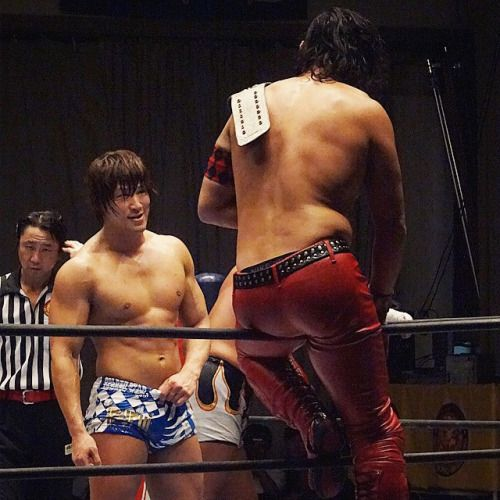 PRINCE OF FIGHTS | Search results for: shinsuke nakamura