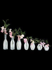 H.P.DECO|Tse&Tse associees 一週間の花器
