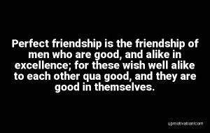 Perfect friendship is the image