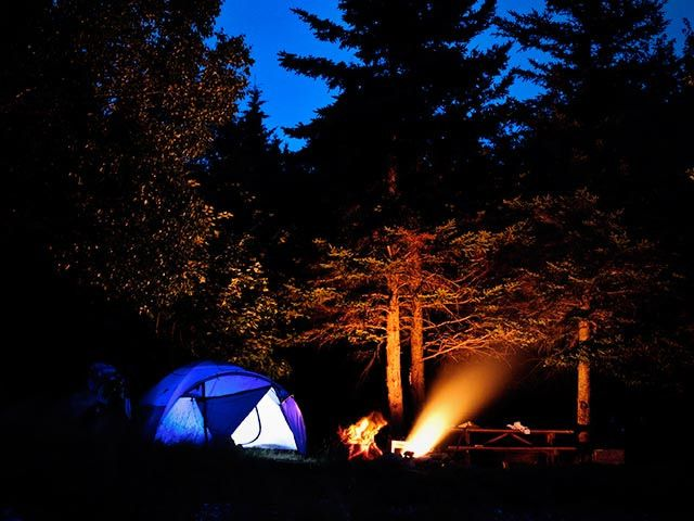 Come camping on our land! http://www.cabotshores.com/