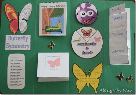 Cute butterfly lapbook