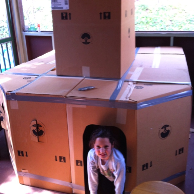 14 best images about box fort on pinterest diy cardboard for Things to make out of cardboard for kids