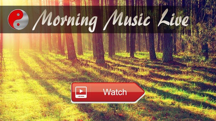 Morning Music Instrumental Relaxing Live Stream Music Playlist Royalty Free Background Music  Morning Music Instrumental Relaxing Live Stream Music Playlist Royalty Free Background Music Looking For Royalty Fr