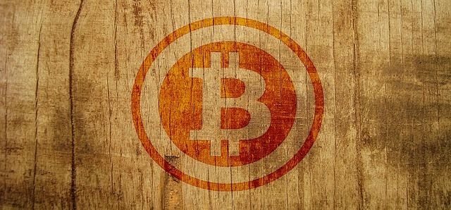 Bitcoin Hits $X!!!!!