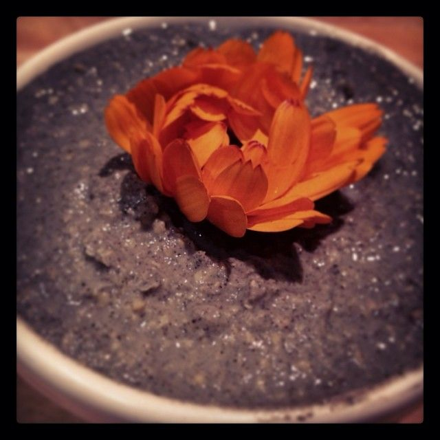 Instagram Photo Feed on the Web - Gramfeed | kaisersusanne
