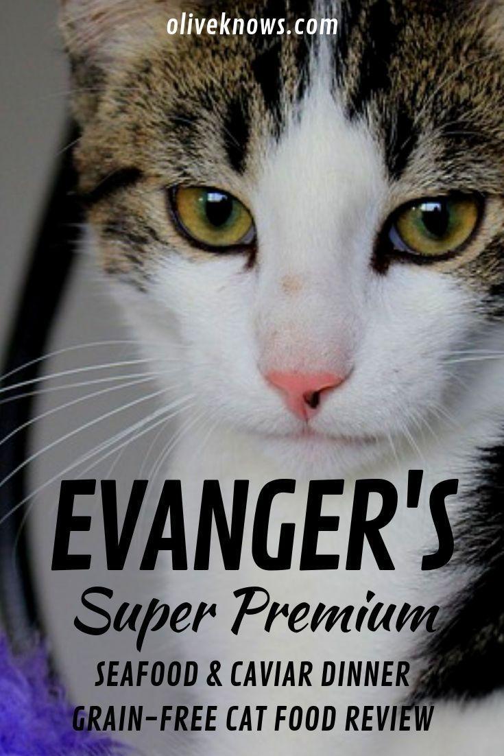 Evanger S Super Premium Seafood Caviar Dinner Grain Free Canned Cat Food Review Cat Food Reviews Cat Food Canned Cat Food