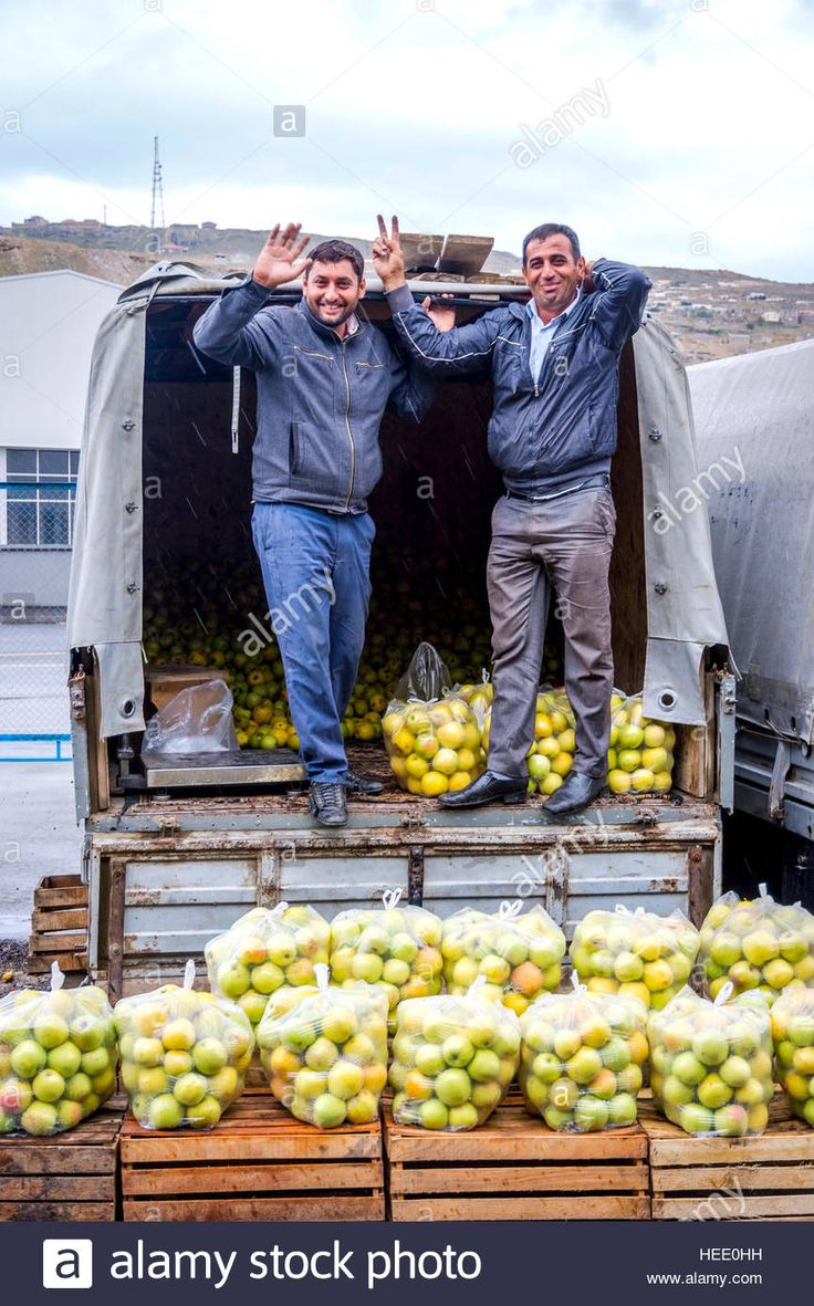 BAKU, AZERBAIJAN - SEPTEMBER 24: Man packing apples in the bags from full trucks at the local wholesale market in Baku. September 2016 Stock Photo