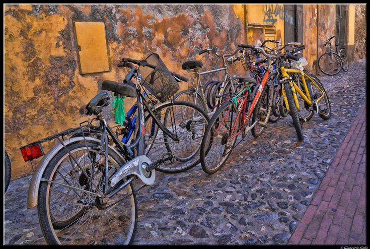 disorderly bicycles by Giancarlo Gallo
