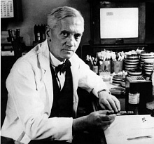 the life of alexander fleming and his discovery of penicillin a group of antibiotics The scottish bacteriologist alexander fleming returned from his summer  penicillin – came to be one  antibiotic discovery, as one-half of the antibiotics.