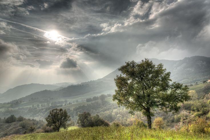 https://flic.kr/p/sWTyRc | Lonely Tree - Carpineti (RE) Italy - October 19, 2015 | Handheld HDR