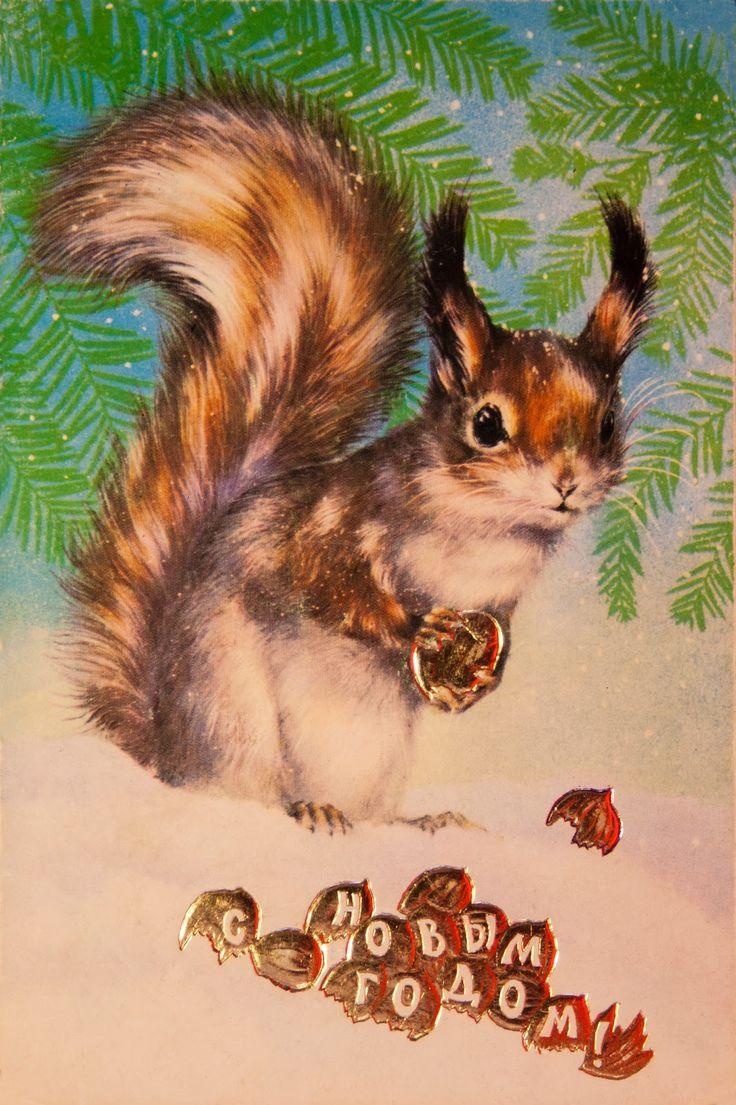 Новогодние открытки белка, надписью класс представляет