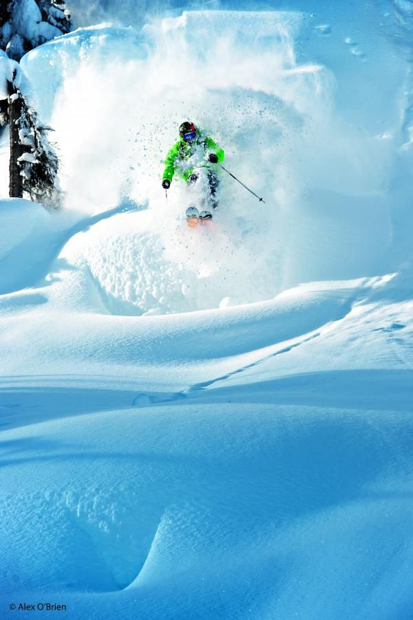 Skiing deep powder