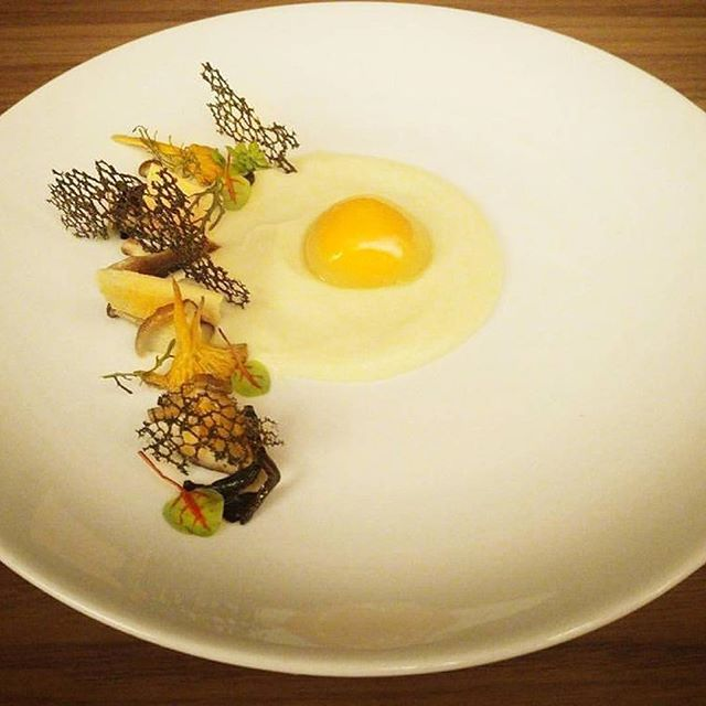 Wild mushrooms, parsnip puree egg yolk poached 🇬🇷By @xariszeugoulis via @PhotoAroundApp. Use #chefsplateform for get featured!#foodstyle#food#foodie#foodpic#hungry#instafood#eat#eating#gourmet#foods#yum#yummy#chefslife#chefstalk#foodgasm#foodstagram#foodporn#chef#culinary#truecooks#gastronogram#instachef#wildchefs#repost#fresh#foodphotography#tasty#delicious