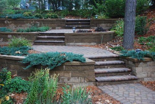 Menards Landscaping Bushes : Best images about terraced garden on