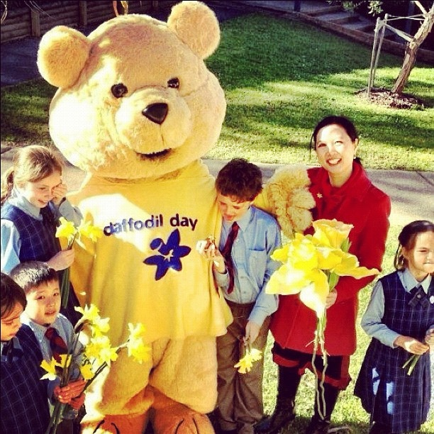 On Tuesday, DaffodilDay ambassador & former ABC Play School presenter Joy Hopwood made a special visit to La Perouse State School, Sydney, with Dougal Bear to chat with the kids about cancer & why it's important to support DaffodilDay. There were hugs all round for Dougal Bear and even a hint of trouble! Shot at La Perouse State School.