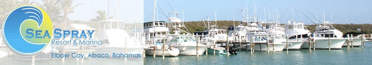 """Sea Spray Marina. Elbow Cay, Abacos. Small & quaint, a hidden gem with the feeling of being """"off the grid"""". Villas on beach cliff amazing, best cracked conch in all the Bahamas at Marina bar."""
