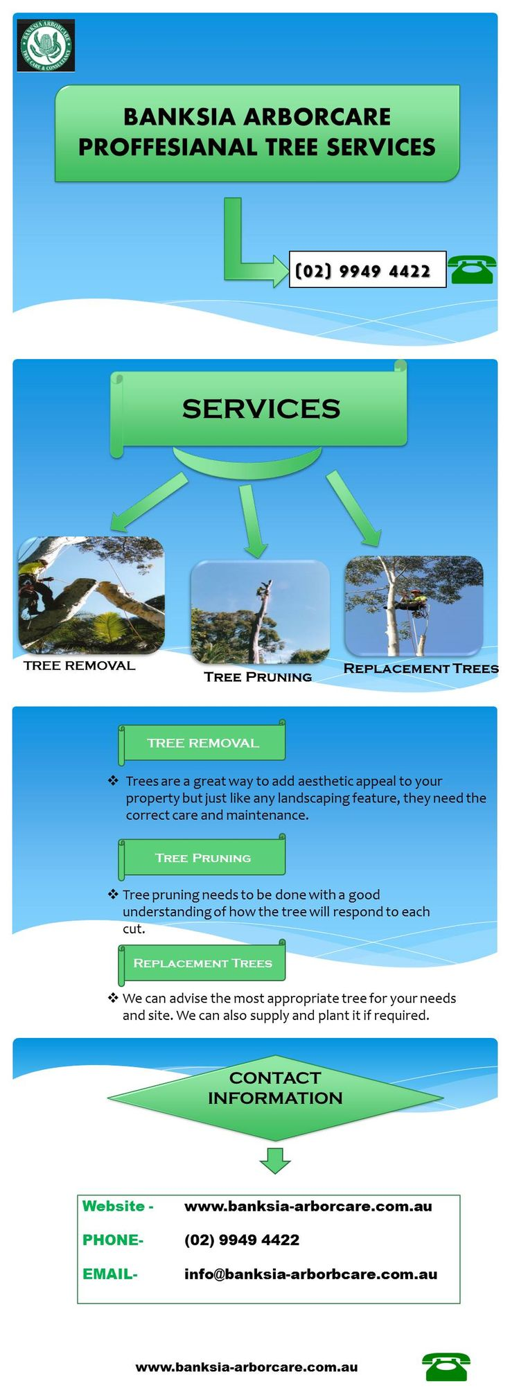 Tree borers amp bark beetles arborx tree health care - Banksia Arborcare Offers Tree Removal Services In Sydney And Able To Work With You Safely And