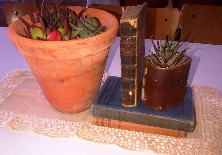 Old books and succulents....flowerless centrepieces