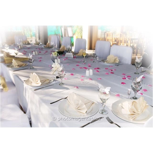 62 best wedding in cyprus images on pinterest beach weddings wedding reception at ficardos paphos cyprus junglespirit Choice Image
