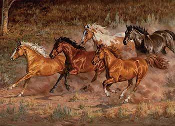 Downhill Run-Horses Canvas by Chris Cummings