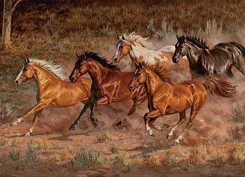 Downhill Run-Horses Canvas by Chris Cummings