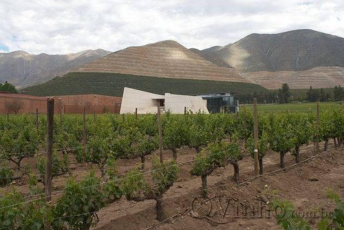 Don Maximiano Icon Winery - Viña Errazuriz | Flickr – Compartilhamento de fotos!