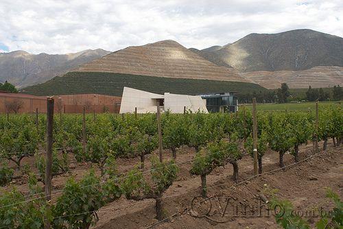 Don Maximiano Icon Winery - Viña Errazuriz | Flickr – Compartilhamento de fotos!