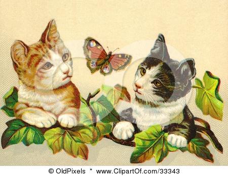 Victorian cats: Cat Art, Clipart Illustrations, Victorian Cat, Butterflies, Curious Victorian, Cat Inspiration, Ivy Leaves, Vintage Cat, Gardens Cat