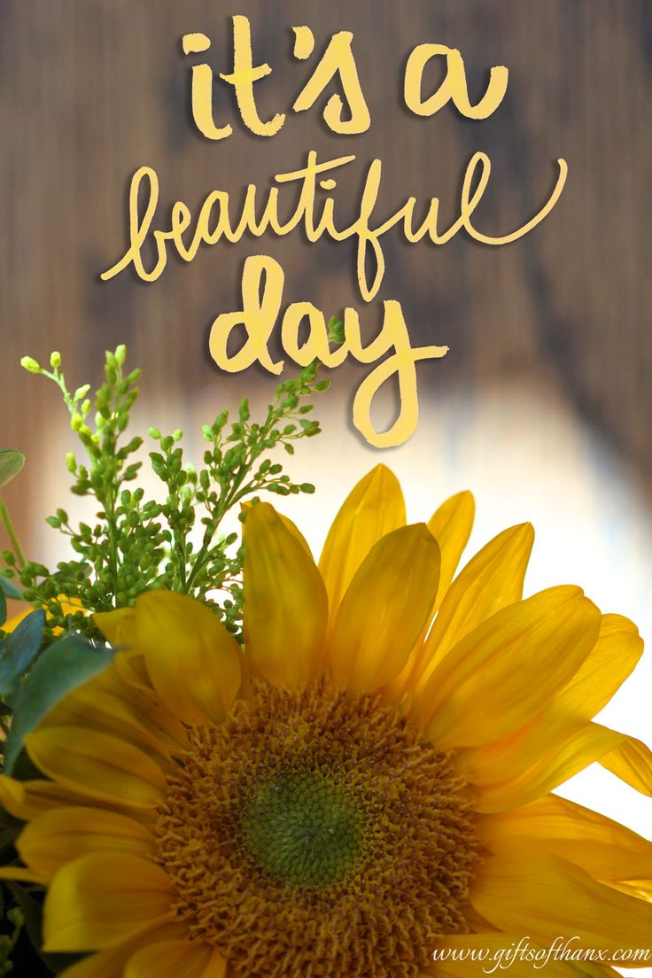 Article : Album Its A Beautiful Day du groupe Its A