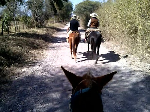 Riding with gauchos