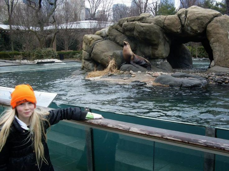 Fun things to do with kids: Central Park Zoo - New York City